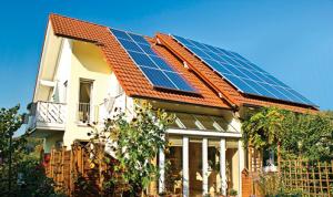 ReneSola Virtus II Solar Panel Module Product Image