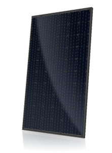 CS6K-M ALL BLACK Solar Module