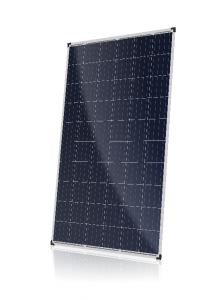 CS6K-P-FG DYMOND Solar Module Solar Panel Product Image