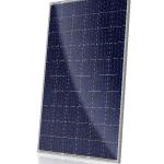 CS6P-P Solar Module