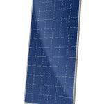 CS6X-P MAXPOWER Solar Module Product Image